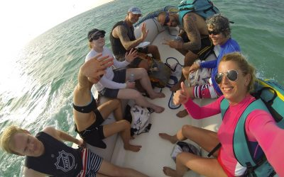 Egypt boat safari 2015.
